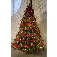 albero-di-natale-3-metri-1