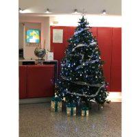 Albero di Natale 3 Metri| Affitto Albero di Natale 3 Metri| Noleggio Albero di Natale 3 Metri