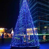 Albero Luminoso| Affitto Albero Luminoso| Noleggio Albero Luminoso